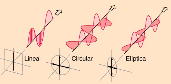 tipos de luz polarizada
